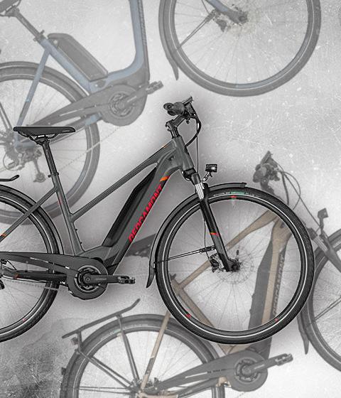 Elektro-City-/Trekkingräder Bergamont